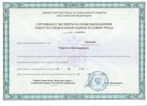 Сертификат ЭКСПЕРТА СОУТ Кульнин